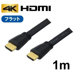 AVC-HDMI10FL