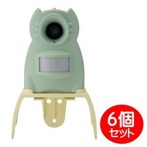 GDX-M-6P