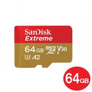 SDSQXA2-064G-GN6MA