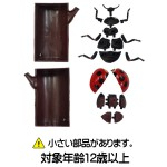 YPF-INSECT-HAK