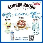 KIRIN-085308