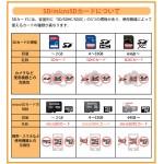 SDSDUN4-128G-GN6IN